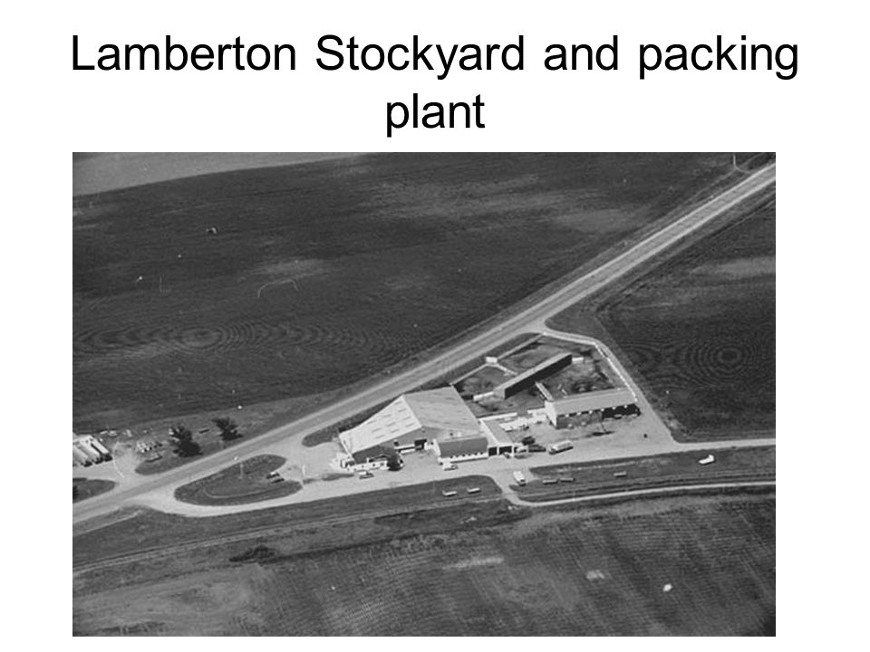 Lamberton Stockyard and packing plant