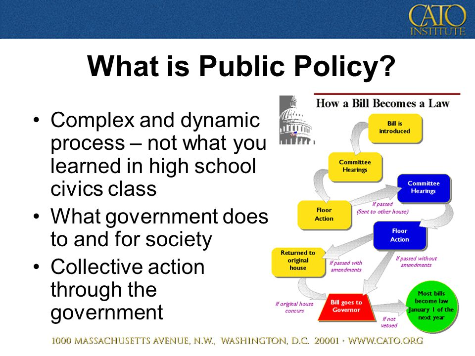 What is Public Policy? Complex and dynamic process – not what you learned in high school civics class What government does to and for society Collecti