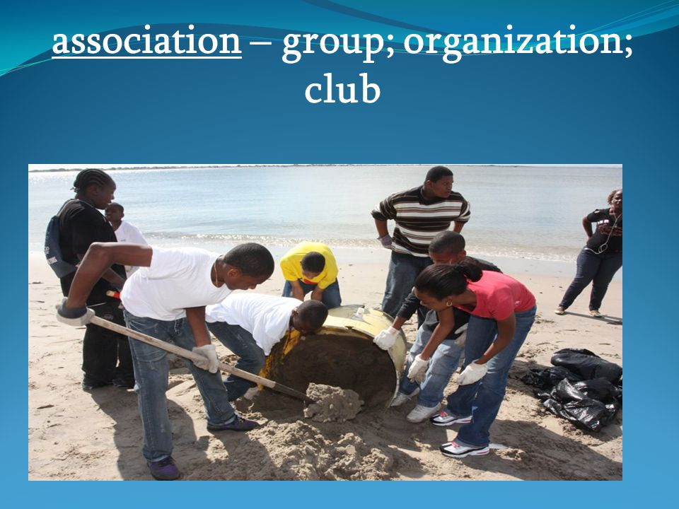 association – group; organization; club