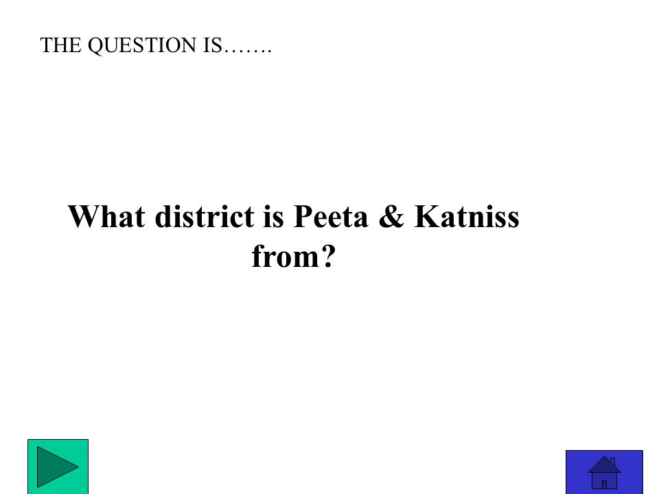 THE ANSWER IS………………. Haymitch
