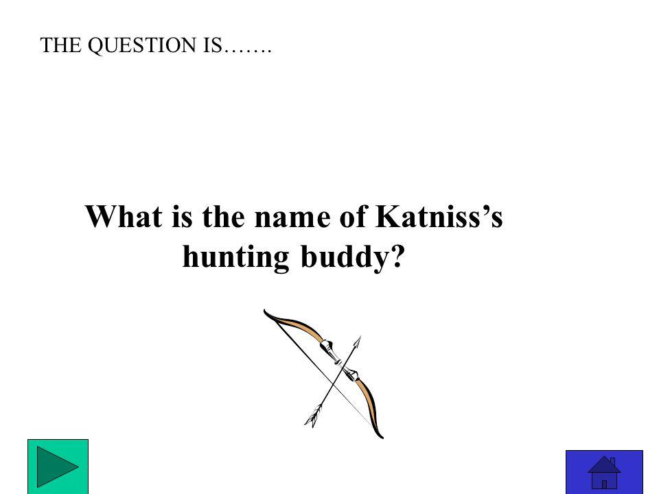 THE ANSWER IS………………. Mockingjay
