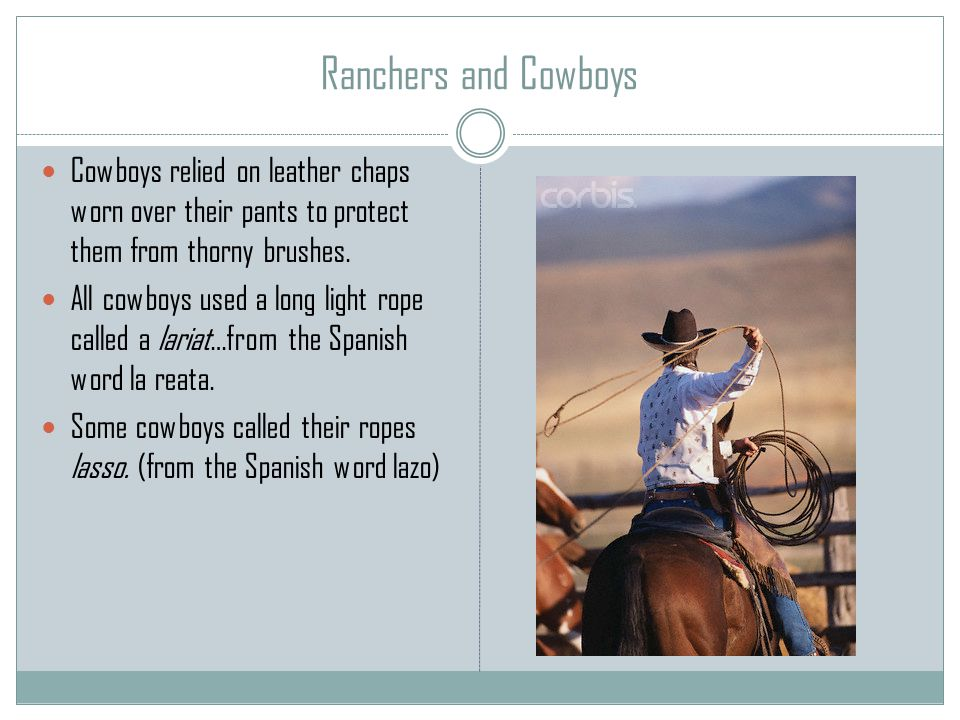 Ranchers and Cowboys Cowboys relied on leather chaps worn over their pants to protect them from thorny brushes.