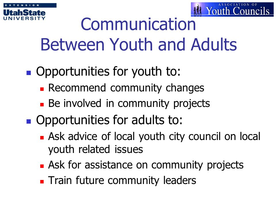 Communication Between Youth and Adults Opportunities for youth to: Recommend community changes Be involved in community projects Opportunities for adults to: Ask advice of local youth city council on local youth related issues Ask for assistance on community projects Train future community leaders