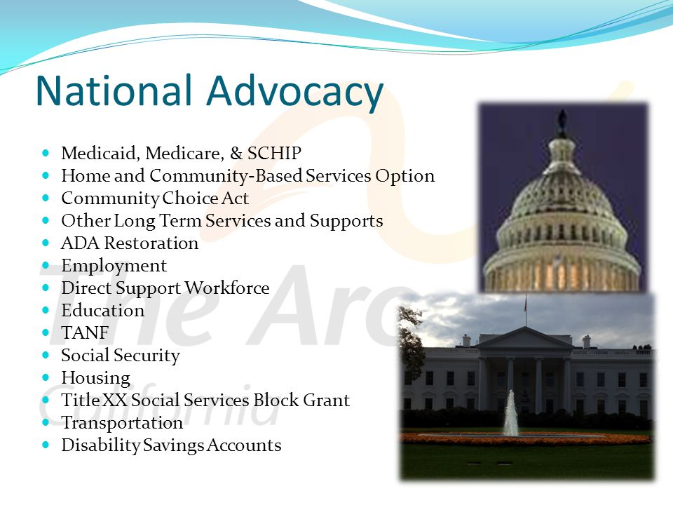 National Advocacy Medicaid, Medicare, & SCHIP Home and Community-Based Services Option Community Choice Act Other Long Term Services and Supports ADA Restoration Employment Direct Support Workforce Education TANF Social Security Housing Title XX Social Services Block Grant Transportation Disability Savings Accounts