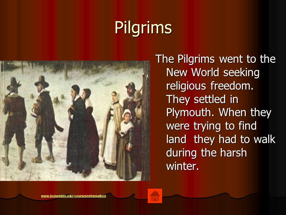 Pilgrims The Pilgrims went to the New World seeking religious freedom.