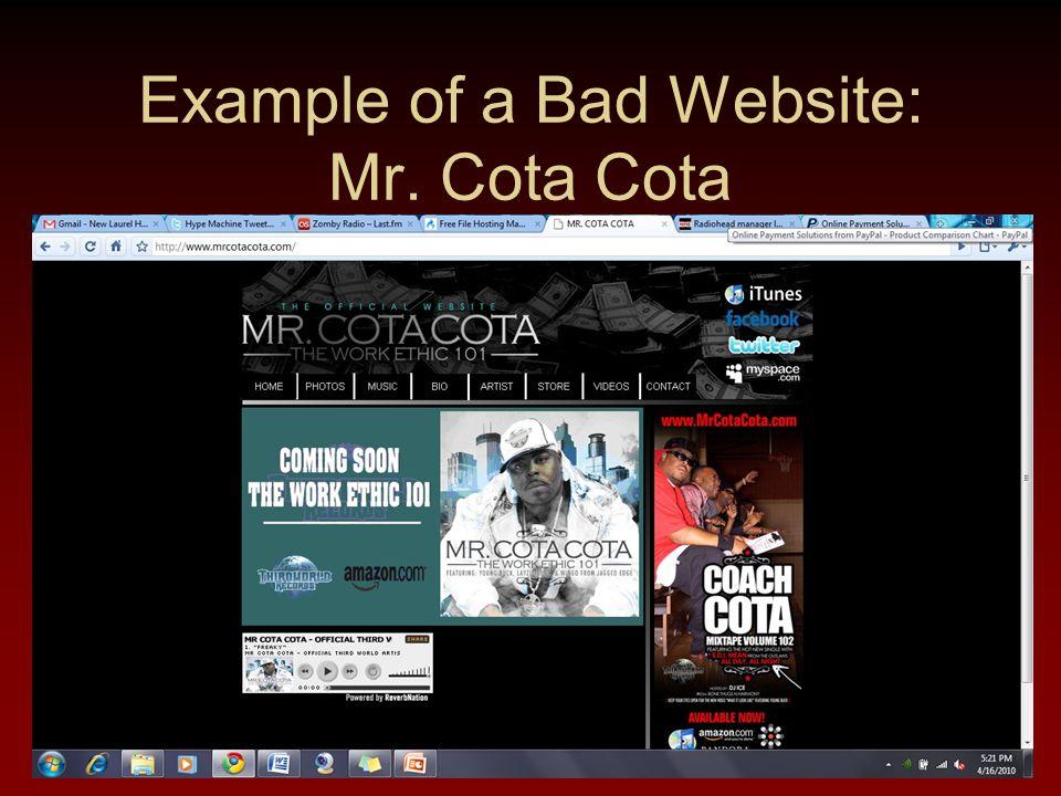 Example of a Bad Website: Mr. Cota Cota