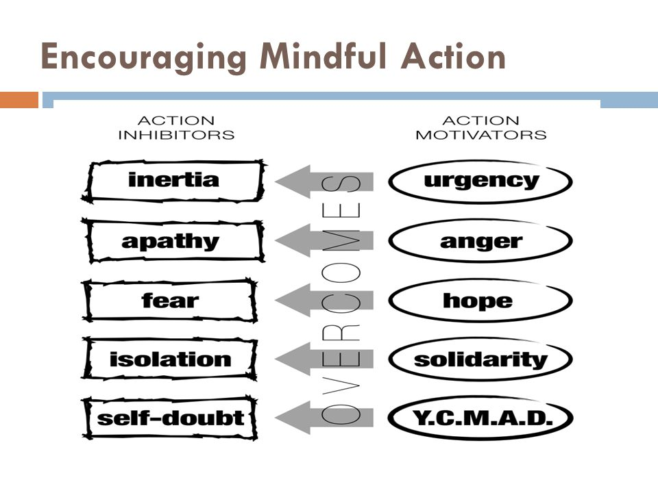 Encouraging Mindful Action