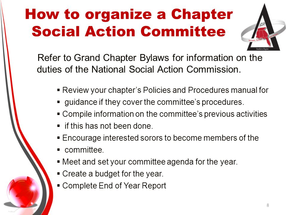 Social Action (SA) Committee and Political Awareness and Involvement (PAI) Committee 9 SAPAI Focus is advocacy, public policy (issues), and legislation Focus is the current laws, ordinances, rules, the electoral process, and elected officials Advocacy takes place first.