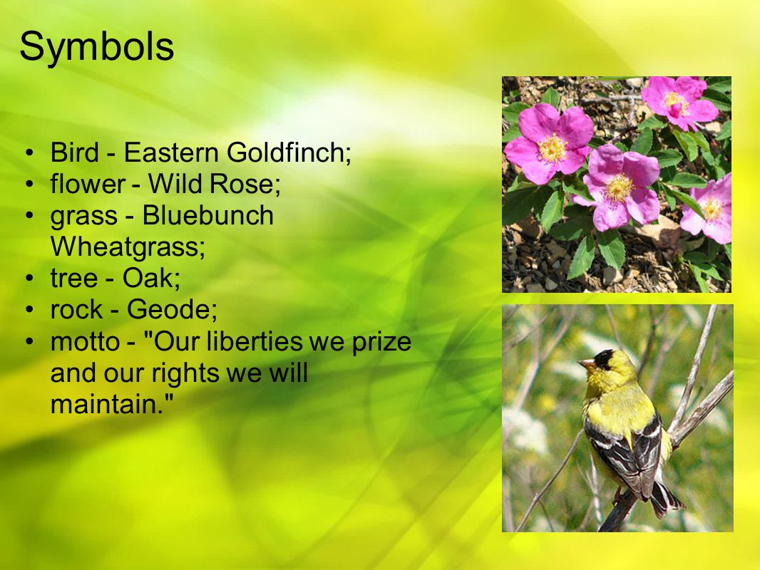Symbols Bird - Eastern Goldfinch; flower - Wild Rose; grass - Bluebunch Wheatgrass; tree - Oak; rock - Geode; motto - Our liberties we prize and our rights we will maintain.