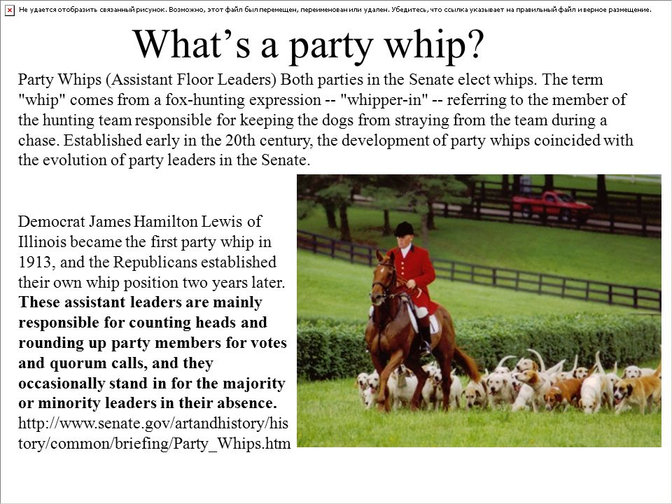 What's a party whip.Party Whips (Assistant Floor Leaders) Both parties in the Senate elect whips.