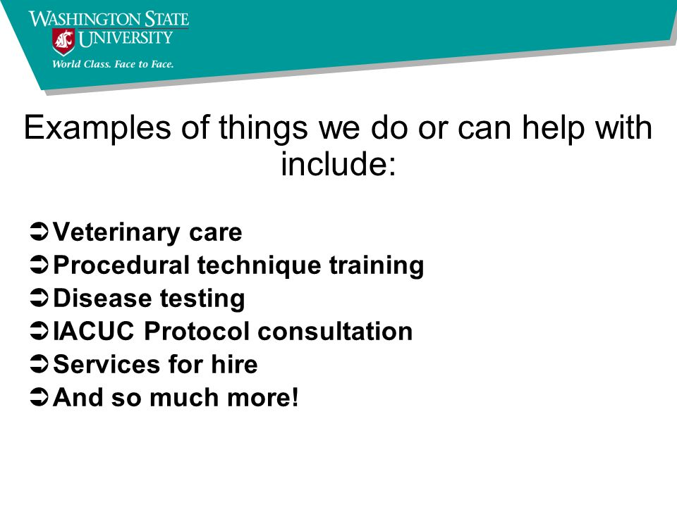 Examples of things we do or can help with include: ÜVeterinary care ÜProcedural technique training ÜDisease testing ÜIACUC Protocol consultation ÜServices for hire ÜAnd so much more!