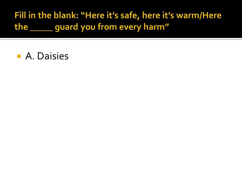  A. Daisies