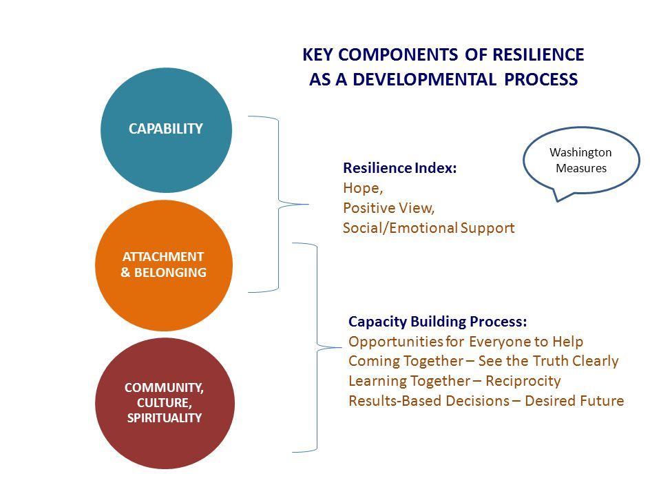 KEY COMPONENTS OF RESILIENCE AS A DEVELOPMENTAL PROCESS CAPABILITY ATTACHMENT & BELONGING COMMUNITY, CULTURE, SPIRITUALITY Resilience Index: Hope, Positive View, Social/Emotional Support Capacity Building Process: Opportunities for Everyone to Help Coming Together – See the Truth Clearly Learning Together – Reciprocity Results-Based Decisions – Desired Future Washington Measures