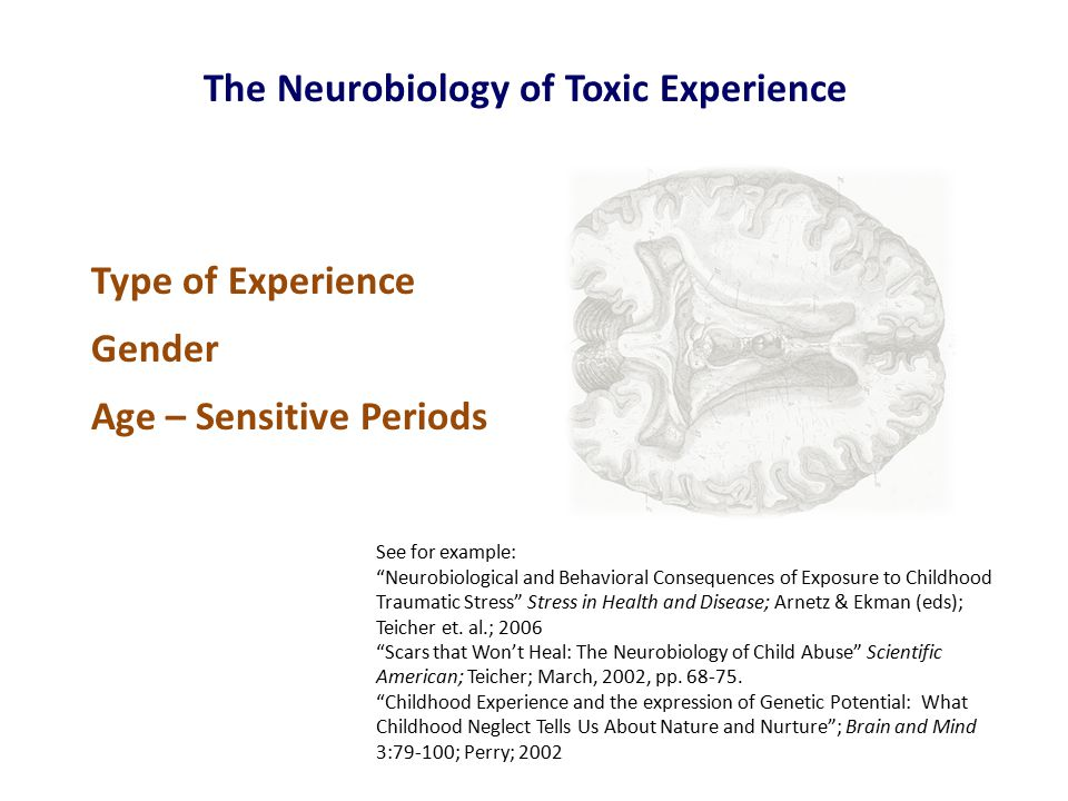The Neurobiology of Toxic Experience See for example: Neurobiological and Behavioral Consequences of Exposure to Childhood Traumatic Stress Stress in Health and Disease; Arnetz & Ekman (eds); Teicher et.