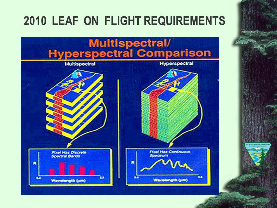 2010 LEAF ON FLIGHT REQUIREMENTS