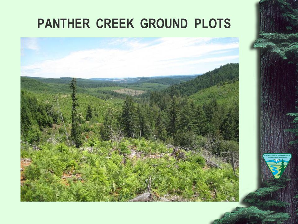PANTHER CREEK GROUND PLOTS