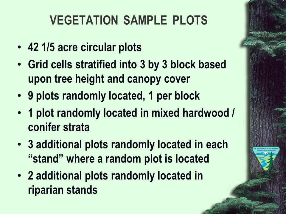 VEGETATION SAMPLE PLOTS 42 1/5 acre circular plots Grid cells stratified into 3 by 3 block based upon tree height and canopy cover 9 plots randomly located, 1 per block 1 plot randomly located in mixed hardwood / conifer strata 3 additional plots randomly located in each stand where a random plot is located 2 additional plots randomly located in riparian stands