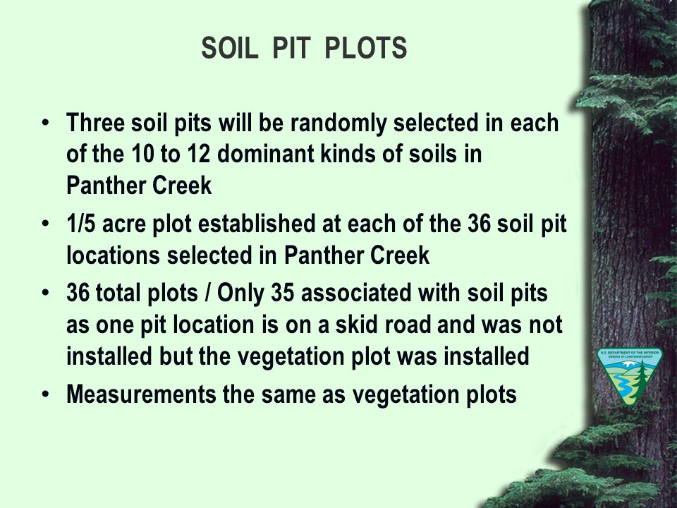 SOIL PIT PLOTS Three soil pits will be randomly selected in each of the 10 to 12 dominant kinds of soils in Panther Creek 1/5 acre plot established at each of the 36 soil pit locations selected in Panther Creek 36 total plots / Only 35 associated with soil pits as one pit location is on a skid road and was not installed but the vegetation plot was installed Measurements the same as vegetation plots