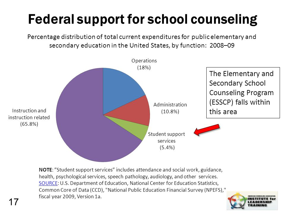 Leadership, Organizational, Personal Development Federal support for school counseling 17 Percentage distribution of total current expenditures for pu