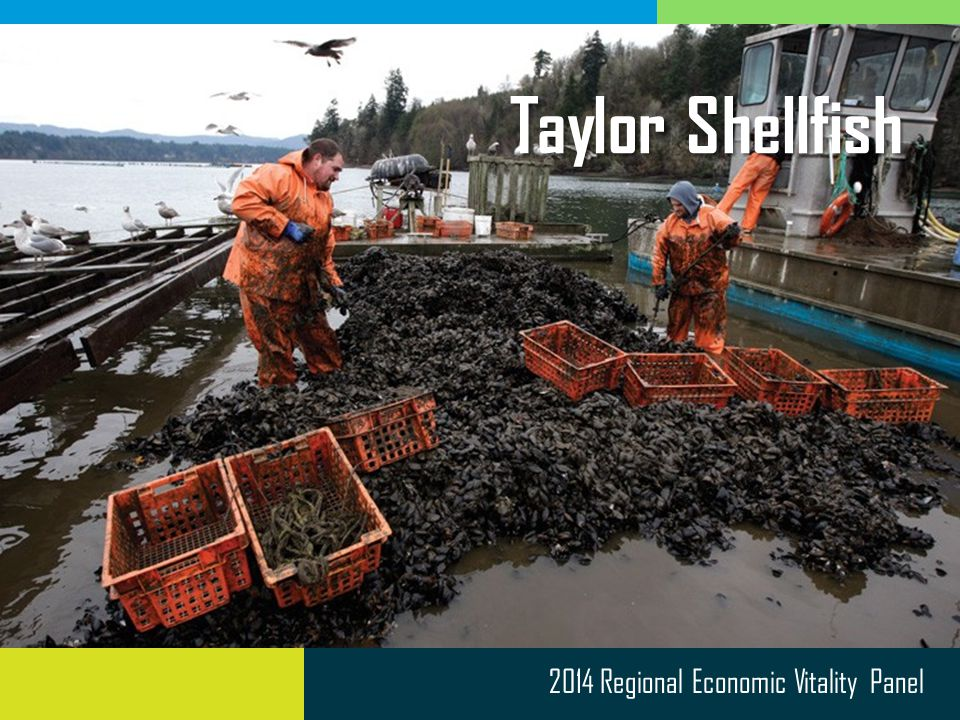 2014 Regional Economic Vitality Panel Taylor Shellfish
