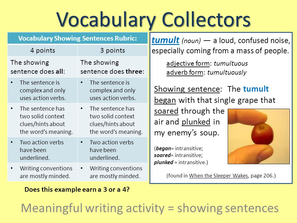 Vocabulary Collectors Vocabulary Showing Sentences Rubric: 4 points3 points The showing sentence does all: The showing sentence does three: The sentence is complex and only uses action verbs.