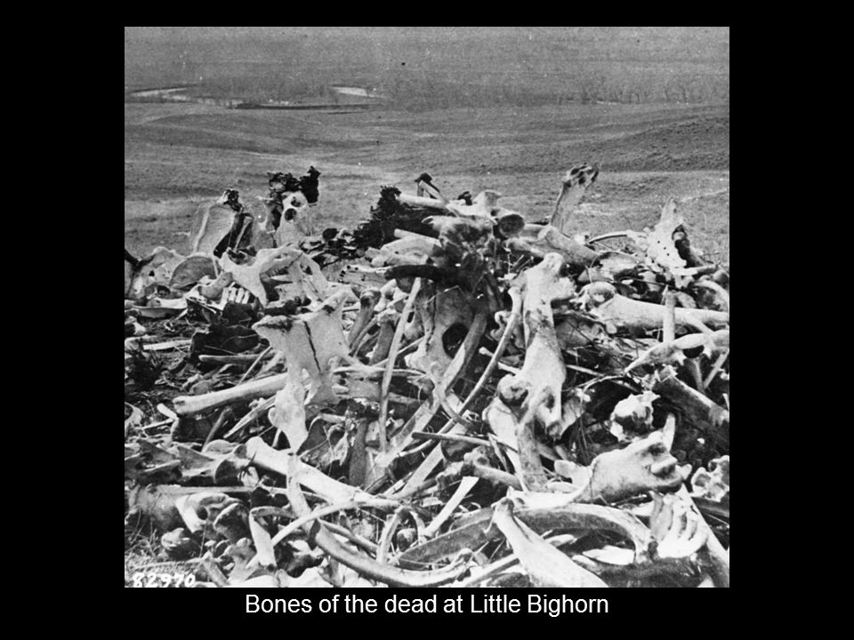 Bones of the dead at Little Bighorn