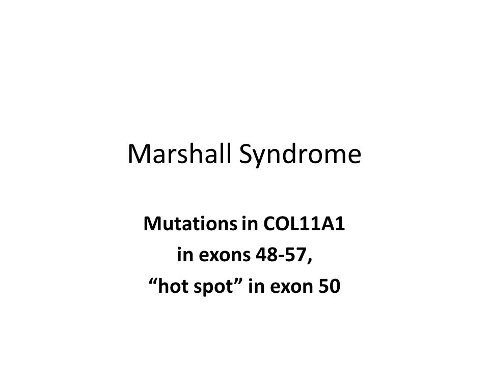"""Marshall Syndrome Mutations in COL11A1 in exons 48-57, """"hot spot"""" in exon 50"""