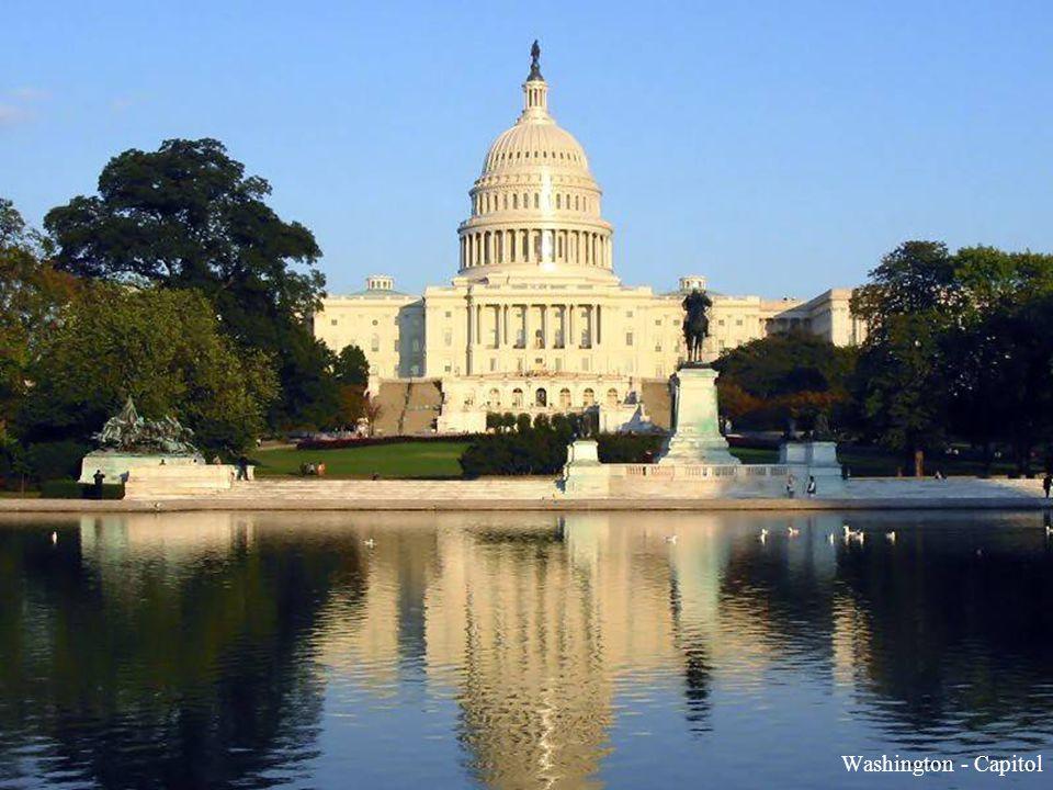 U S A U S A District of Columbia (Washington DC)