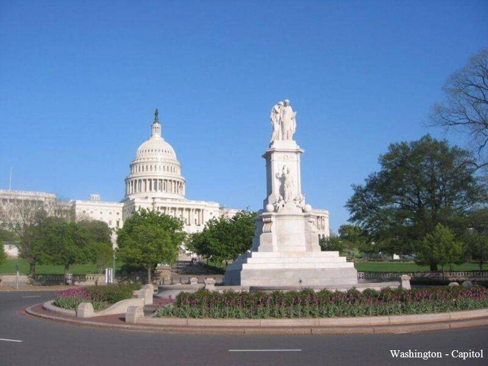 Washington - Capitol