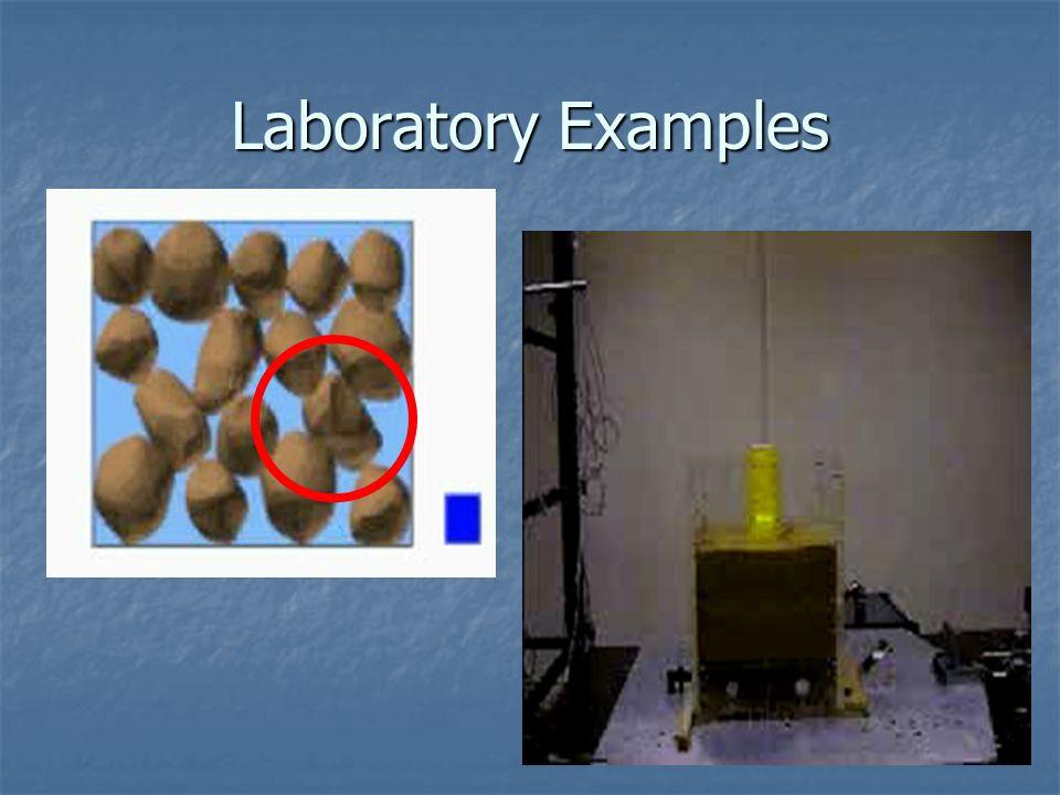 Laboratory Examples