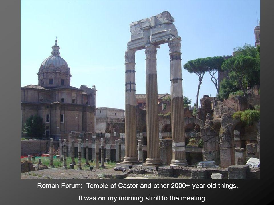 Roman Coliseum. Also on my morning stroll.