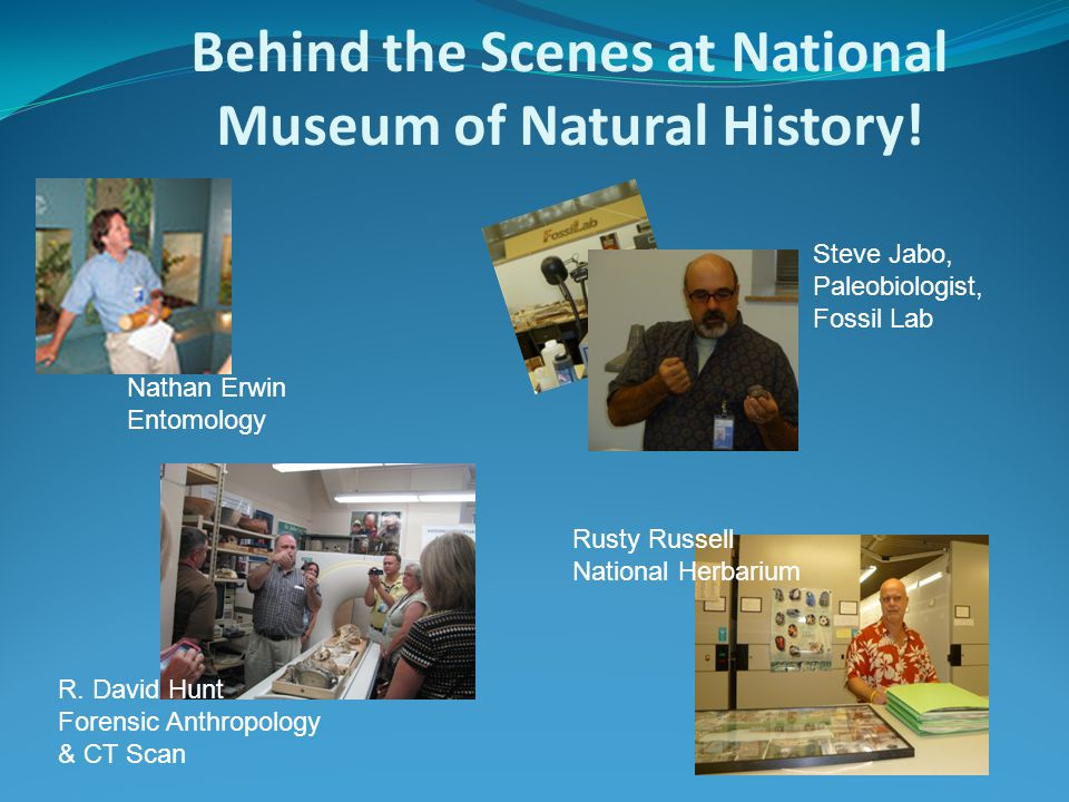 Behind the Scenes at National Museum of Natural History.
