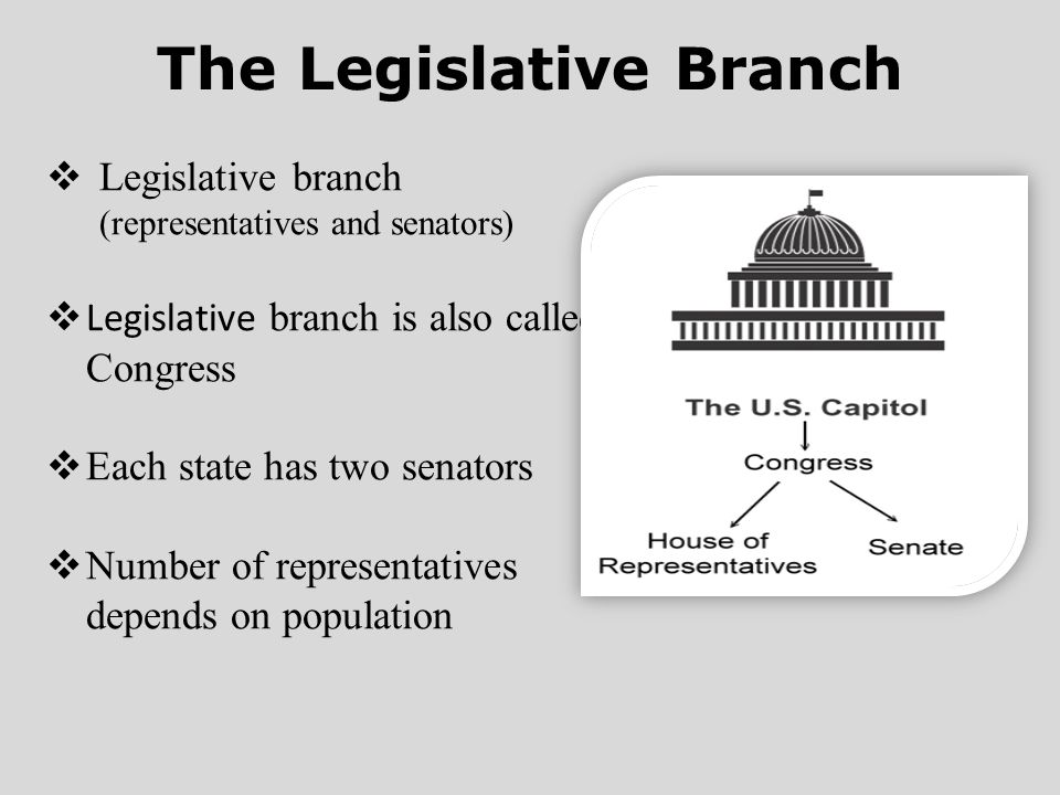 The Legislative Branch  Legislative branch (representatives and senators)  Legislative branch is also called Congress  Each state has two senators  Number of representatives depends on population