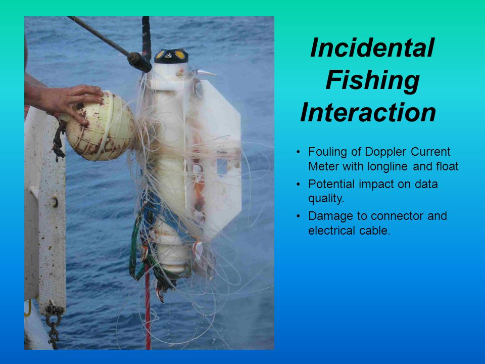 Incidental Fishing Interaction Fouling of Doppler Current Meter with longline and float Potential impact on data quality.