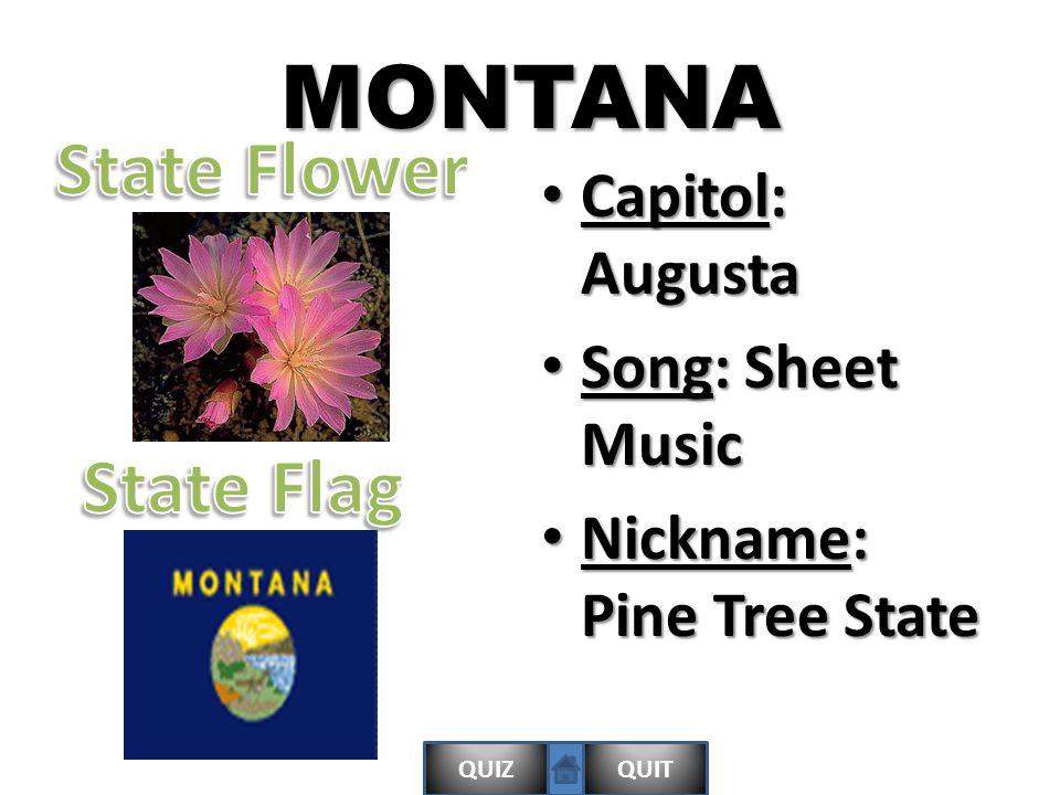 QUIZQUITMONTANA Capitol: Augusta Capitol: Augusta Song: Sheet Music Song: Sheet Music Nickname: Pine Tree State Nickname: Pine Tree State