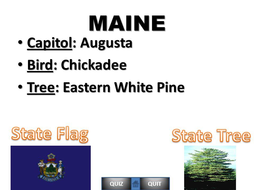 QUIZQUITMAINE Capitol: Augusta Capitol: Augusta Bird: Chickadee Bird: Chickadee Tree: Eastern White Pine Tree: Eastern White Pine