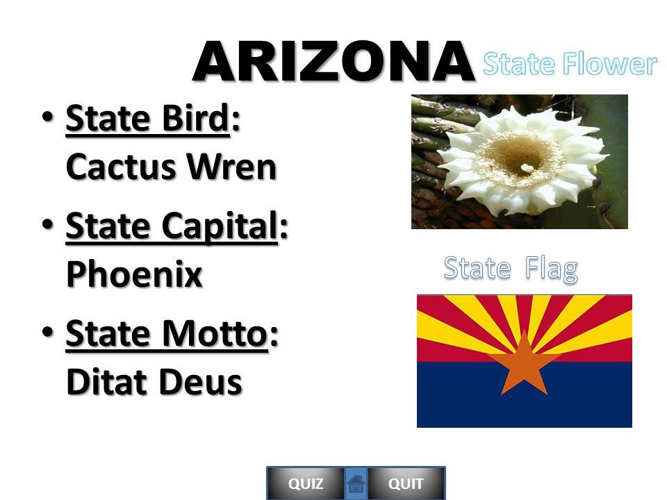 QUIZQUITARIZONA State Bird: Cactus Wren State Bird: Cactus Wren State Capital: Phoenix State Capital: Phoenix State Motto: Ditat Deus State Motto: Ditat Deus