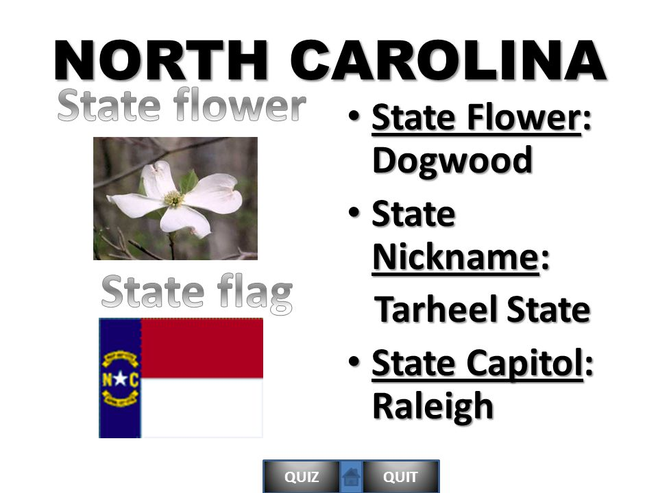QUIZQUIT NORTH CAROLINA State Flower: Dogwood State Flower: Dogwood State Nickname: State Nickname: Tarheel State Tarheel State State Capitol: Raleigh State Capitol: Raleigh
