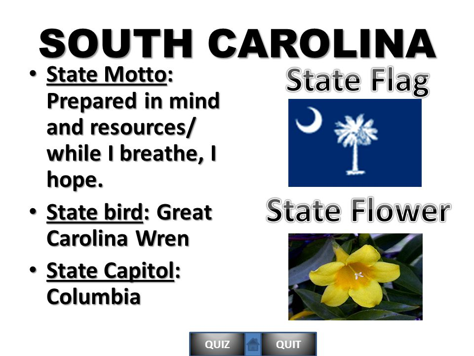QUIZQUIT SOUTH CAROLINA State Motto: Prepared in mind and resources/ while I breathe, I hope.