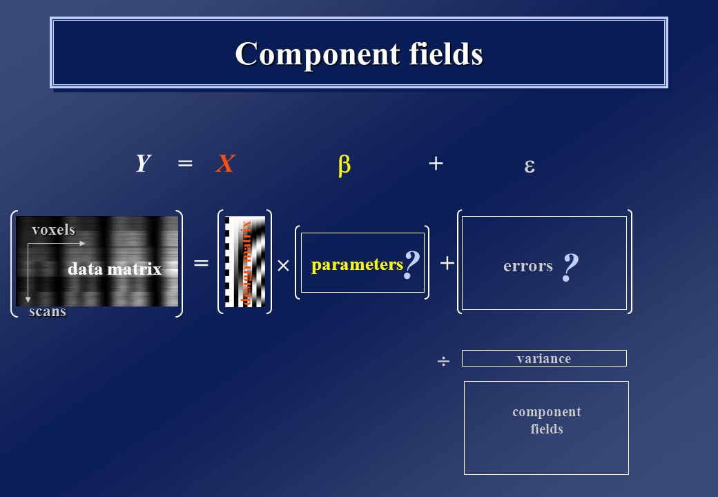 Component fields  =  +YX component fields data matrix design matrix parameters +=  .