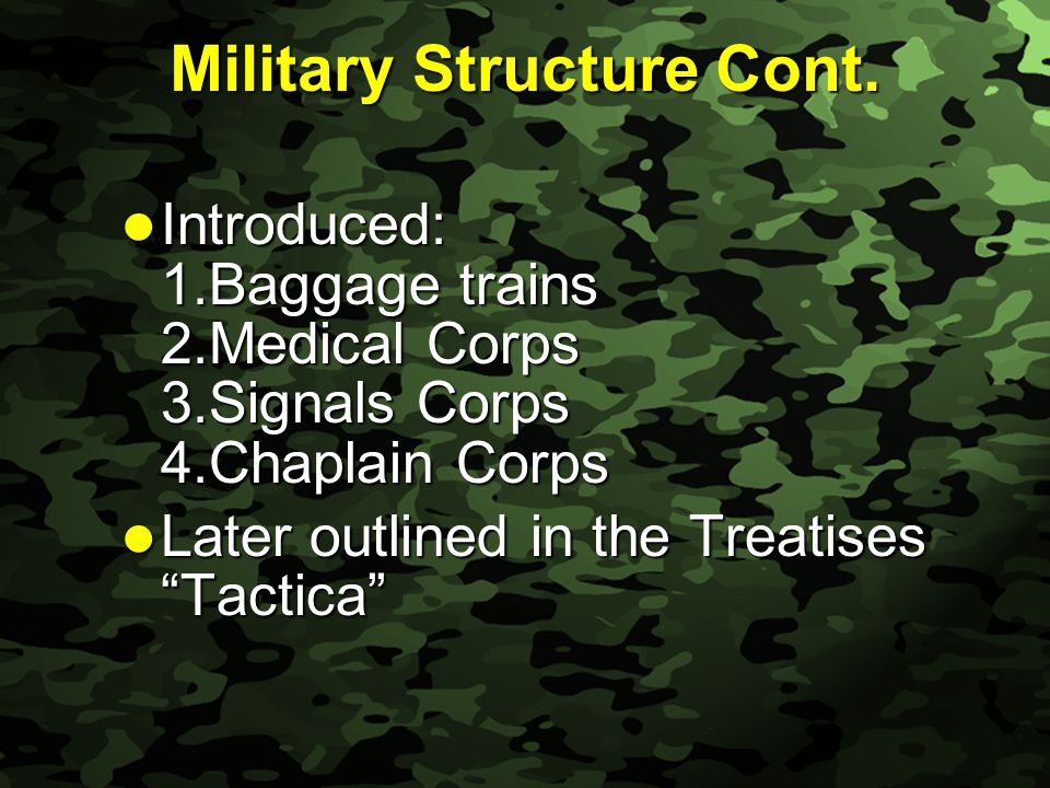 Slide 19 Military Structure Cont.