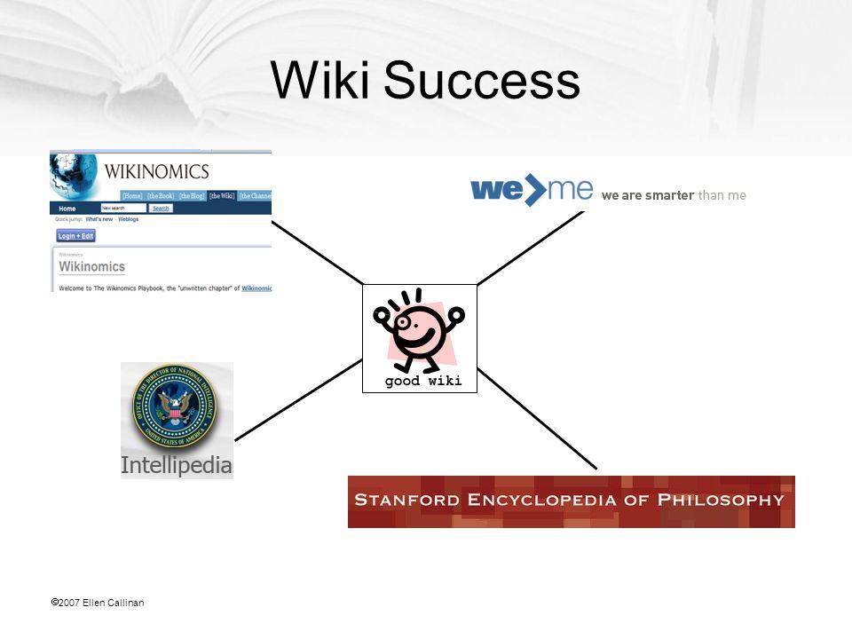  2007 Ellen Callinan Wiki Success