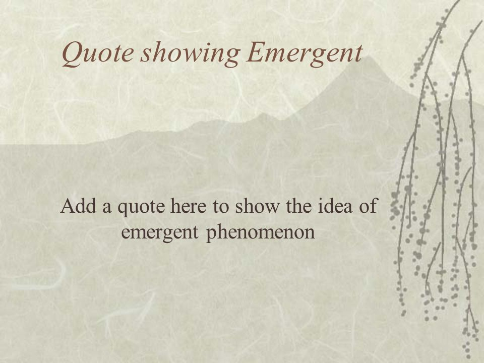 Two Views of Wikipedia Emergent Phenomenon, pseudoDarwinian Community of thoughtful users