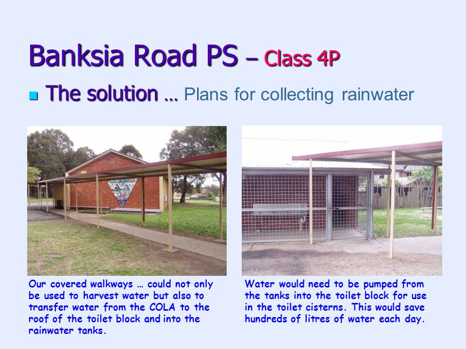 Banksia Road PS – Class 4P The solution … The solution … Plans for collecting rainwater Our covered walkways … could not only be used to harvest water but also to transfer water from the COLA to the roof of the toilet block and into the rainwater tanks.