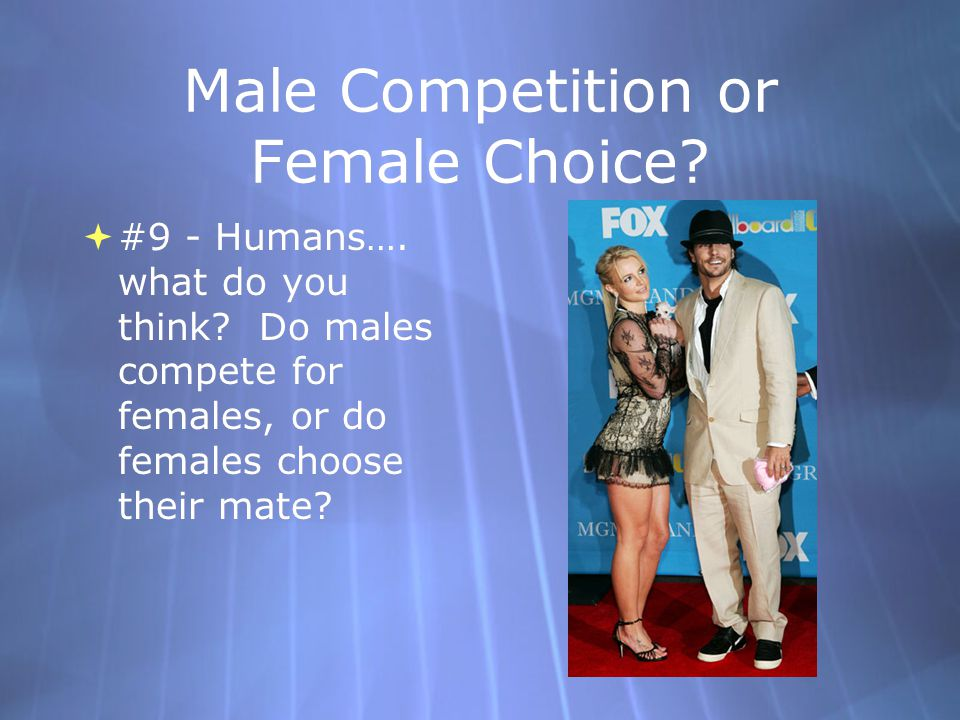 Male Competition or Female Choice.  #9 - Humans….