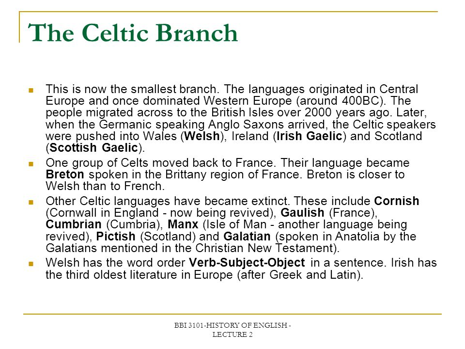 BBI 3101-HISTORY OF ENGLISH - LECTURE 2 The Celtic Branch This is now the smallest branch. The languages originated in Central Europe and once dominat