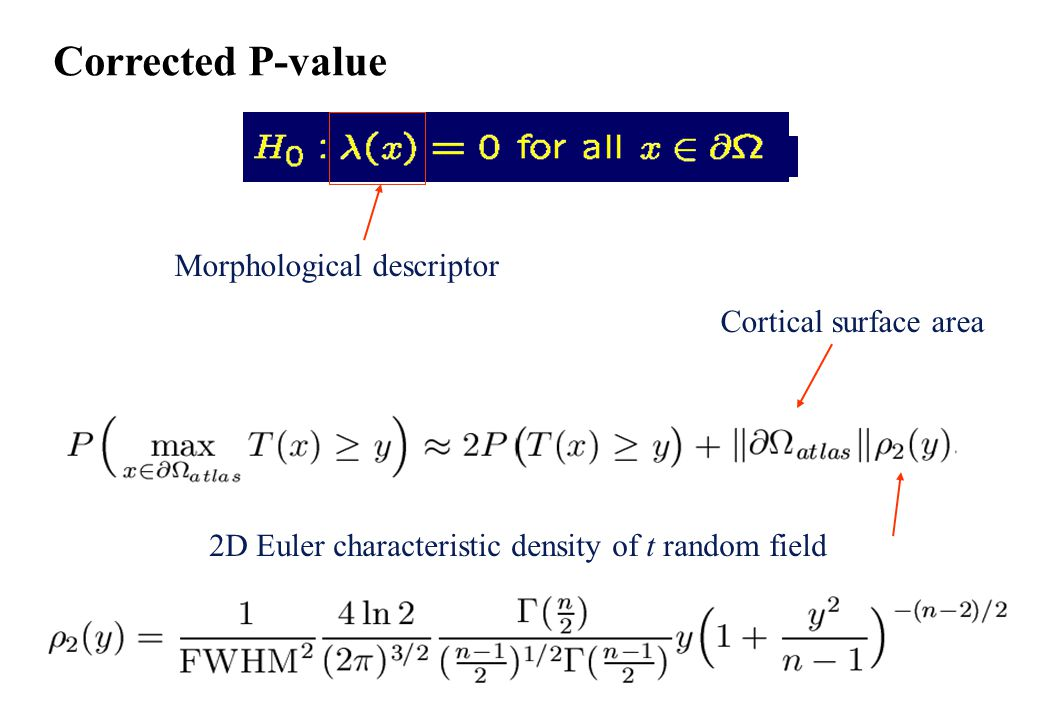 Corrected P-value Morphological descriptor 2D Euler characteristic density of t random field Cortical surface area