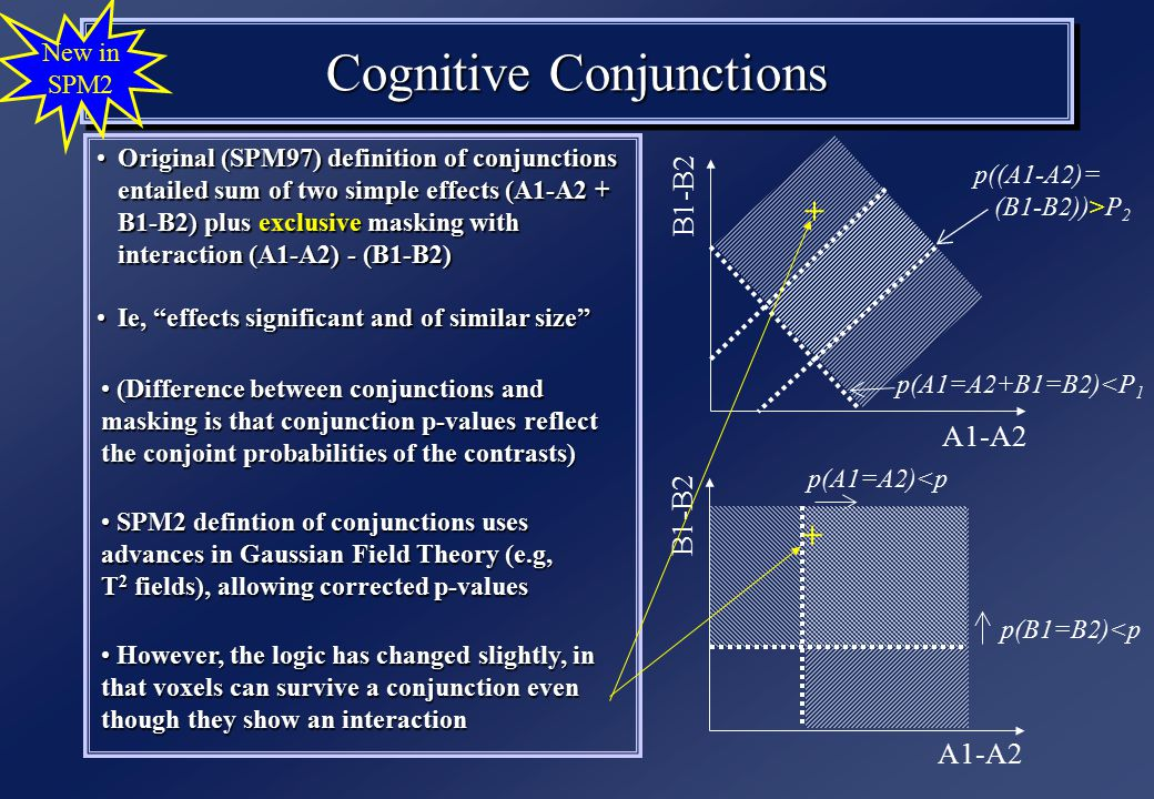 Cognitive Conjunctions Original (SPM97) definition of conjunctions entailed sum of two simple effects (A1-A2 + B1-B2) plus exclusive masking with interaction (A1-A2) - (B1-B2)Original (SPM97) definition of conjunctions entailed sum of two simple effects (A1-A2 + B1-B2) plus exclusive masking with interaction (A1-A2) - (B1-B2) Ie, effects significant and of similar size Ie, effects significant and of similar size New in SPM2 A1-A2 B1-B2 p(A1=A2)<p p(B1=B2)<p A1-A2 B1-B2 p((A1-A2)= (B1-B2))>P 2 p(A1=A2+B1=B2)<P 1 (Difference between conjunctions and masking is that conjunction p-values reflect the conjoint probabilities of the contrasts) (Difference between conjunctions and masking is that conjunction p-values reflect the conjoint probabilities of the contrasts) SPM2 defintion of conjunctions uses advances in Gaussian Field Theory (e.g, T 2 fields), allowing corrected p-values SPM2 defintion of conjunctions uses advances in Gaussian Field Theory (e.g, T 2 fields), allowing corrected p-values However, the logic has changed slightly, in that voxels can survive a conjunction even though they show an interaction However, the logic has changed slightly, in that voxels can survive a conjunction even though they show an interaction + +