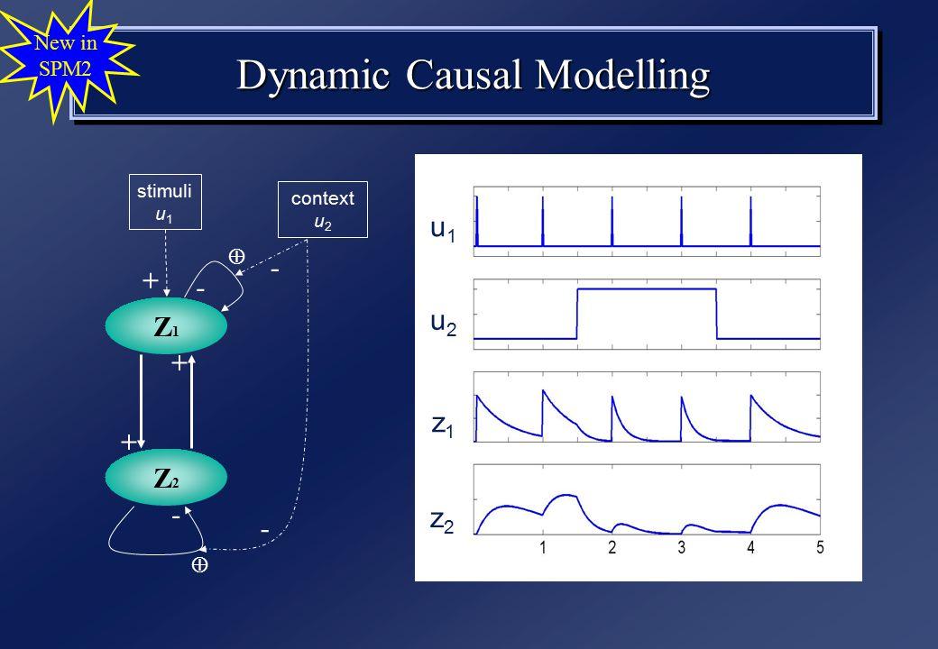 Dynamic Causal Modelling New in SPM2 Z2Z2 stimuli u 1 context u 2 Z1Z1 + + - -  + u1u1 u2u2 z2z2 z1z1 - - 