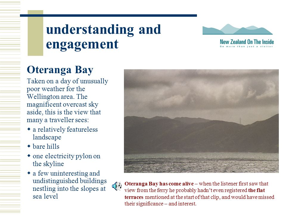understanding and engagement Oteranga Bay Taken on a day of unusually poor weather for the Wellington area. The magnificent overcast sky aside, this i